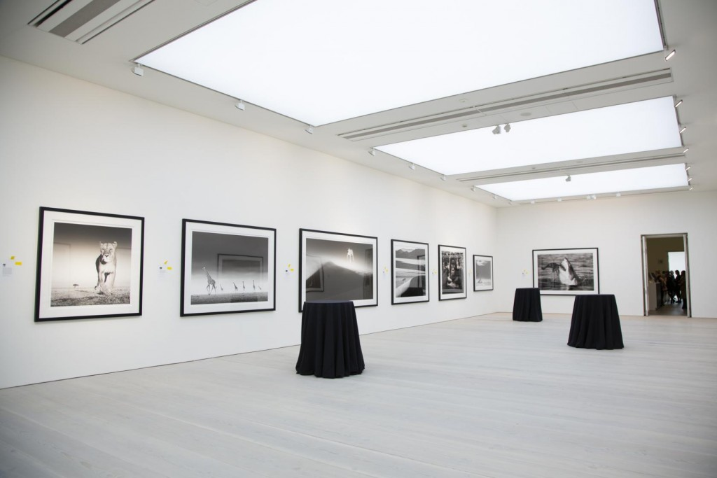 The Saatchi Gallery can be hired for private events.